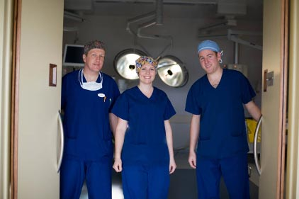 bay radiology experts grace hospital